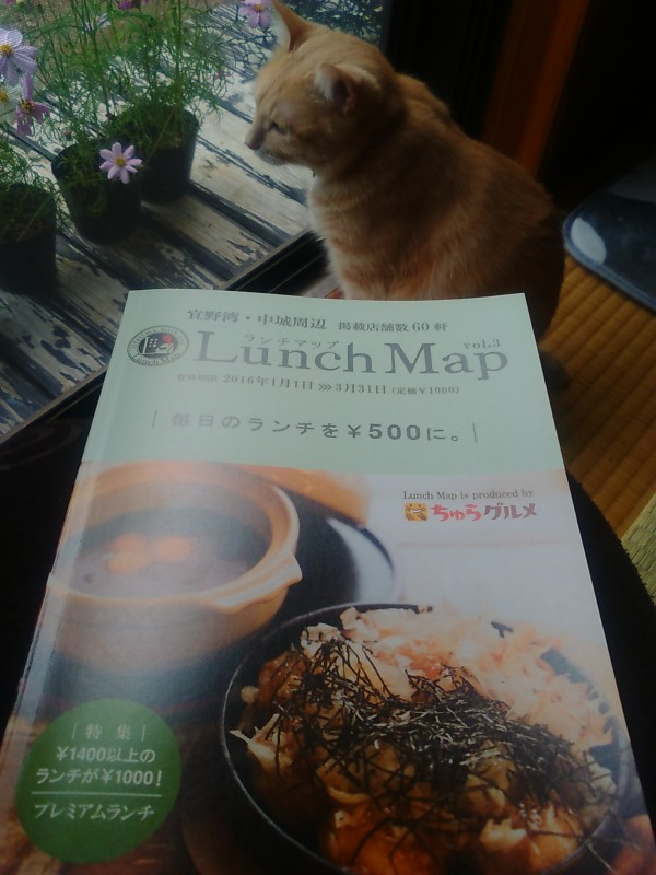 Lunch Map